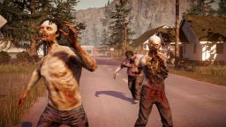 ���� �� State of Decay: ����, �������